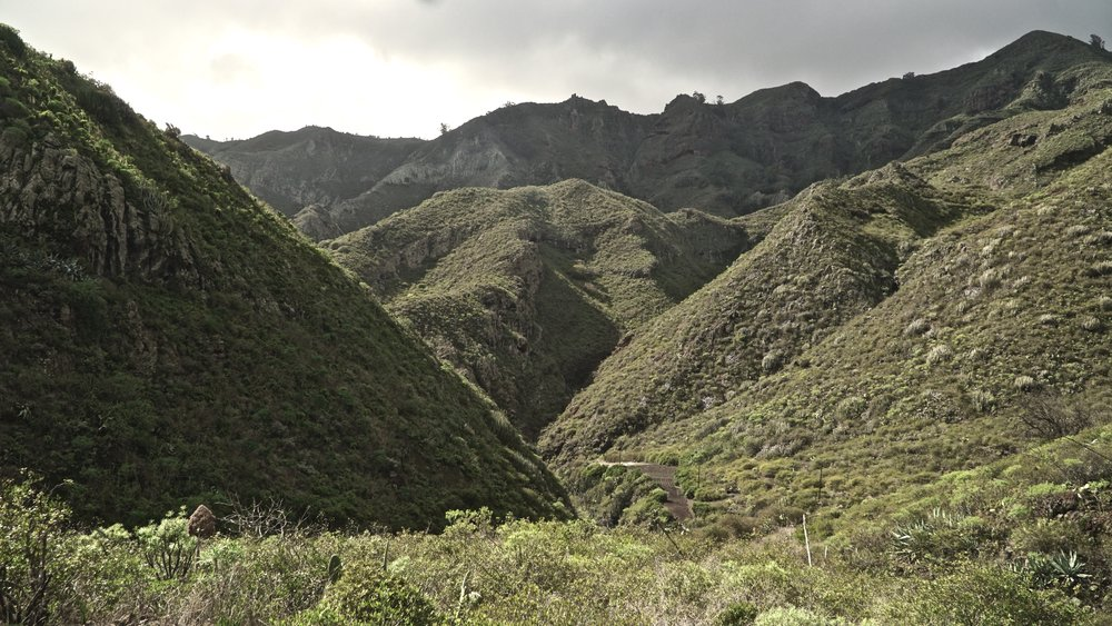Flotte grønne skråninger i Anaga