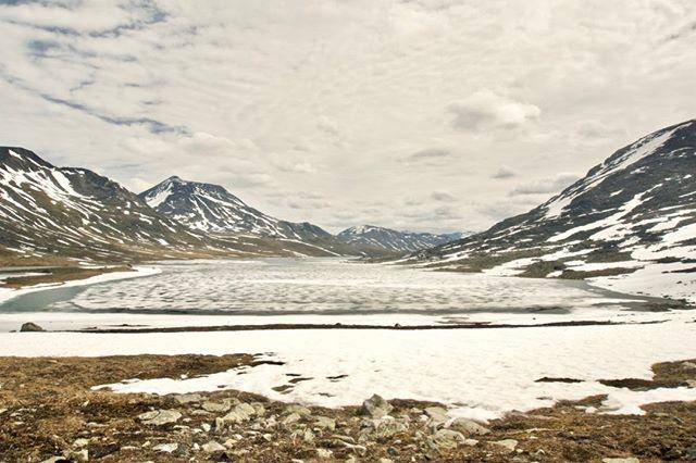 Langvatnet i juli måned! - #opdagverden #friluftsliv #udpåtur #jotunheimen #vandretur #langvatnet