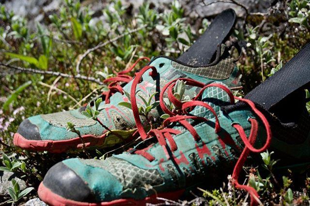 Min gode gamle slidte vandresko! For mange år tilbage begyndte jeg at gå all-in på vandresko til fjeldet. Helt flade, bløde og absolut IKKE vandtætte barfodssko fra @inov_8 blev mit foretrukne fodtøj på vandreturen. Siden da har jeg haft forskellige vandresko fra hhv. @merrell og @vivobarefoot - #friluftsliv #vandretur #hiking #barefoot #inov8 #fejldtur