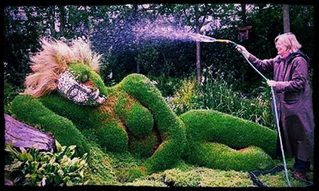 Il-nuovo-giardino-e-sexy-fusion_h_partb.jpg