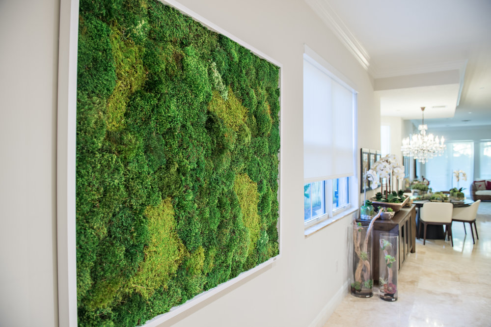 Framed Moss Wall Art available in custom sizes and shapes.