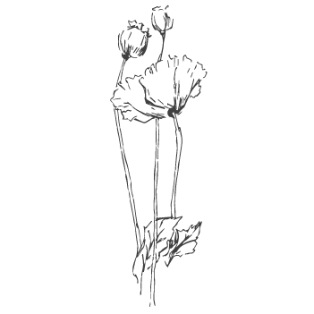 home-enmotion-flower.png