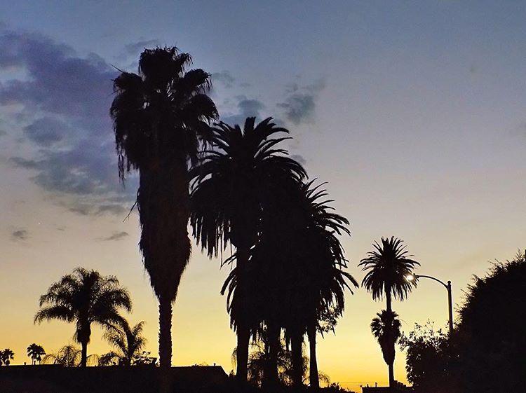 Hollywood 10.jpg