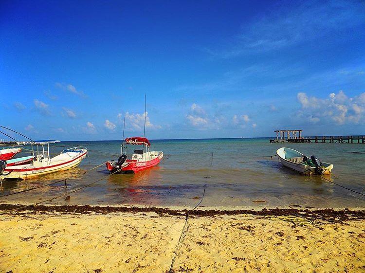 Playa Del Carmen 8.jpg