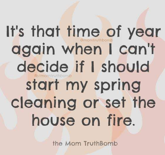 the time of year when you should spring clean or torch the house.jpg