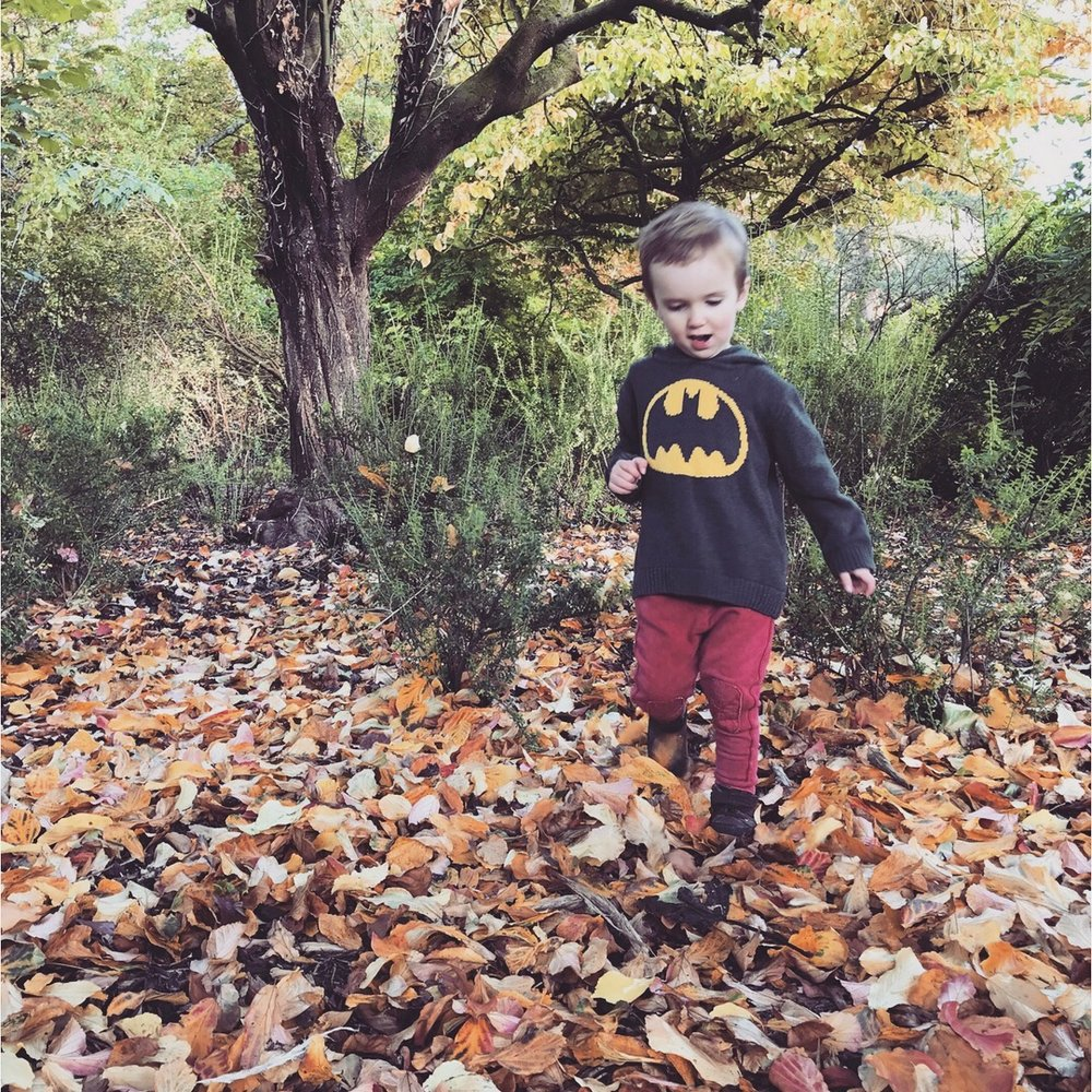 Toddler boy playing in leaves at Linda Vista Garden in Abergavenny Wales