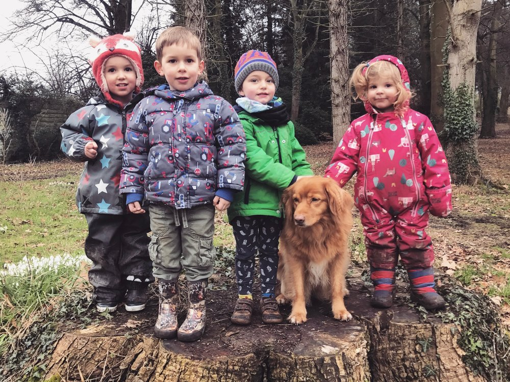 Kids having fun in the forest with their dog.
