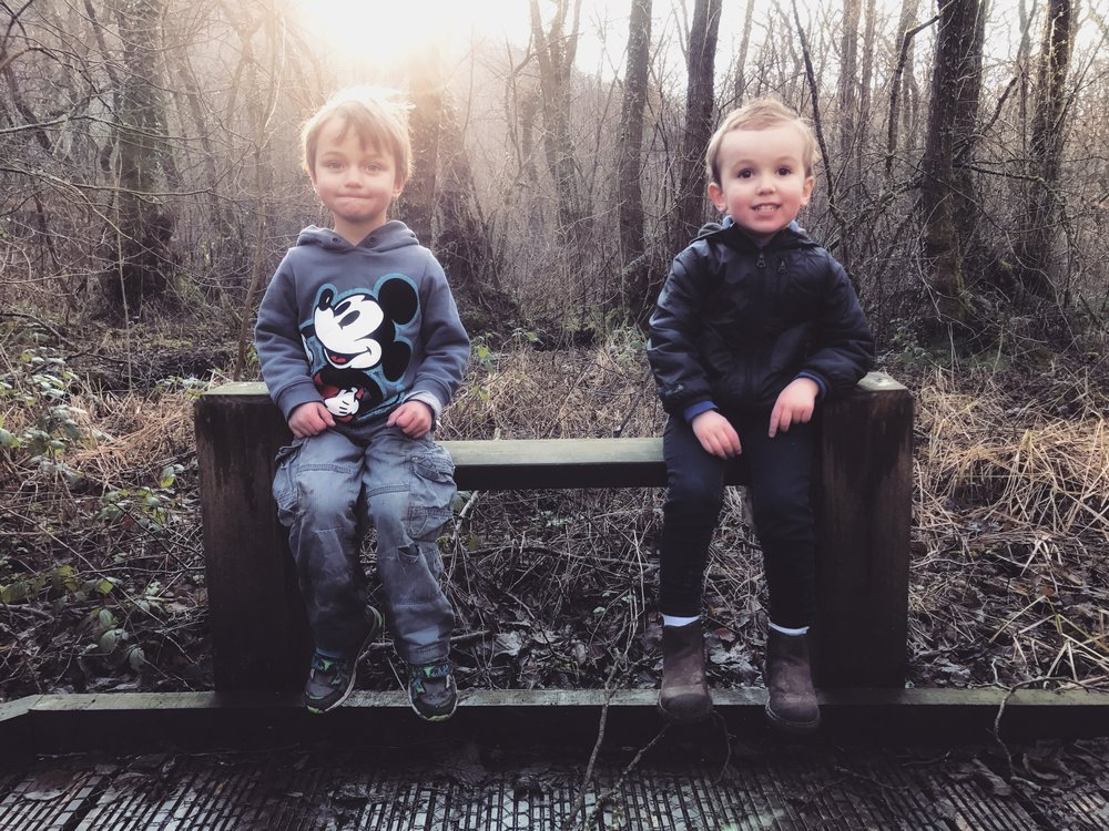 Two little boys sitting on a bench in the forest.