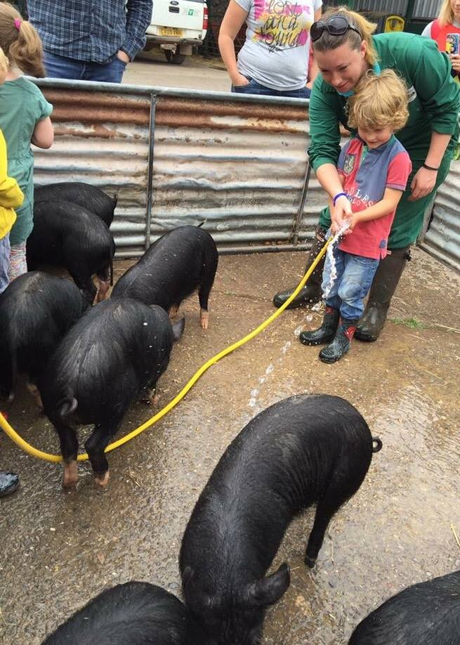 Young Farmer for a Day:Ffermwr Ifanc am Diwrnod (age:oed 4-8) at Greenmeadow Community Farm.jpg