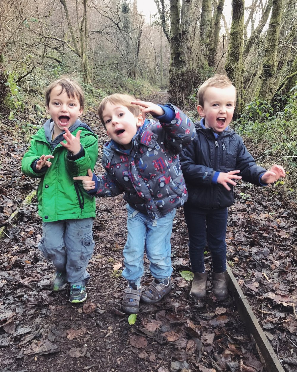 Three toddler boys playing in the forest.