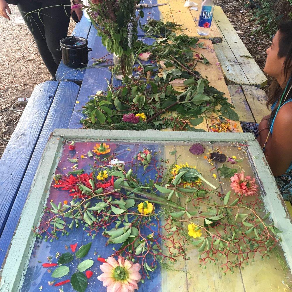 Wax Flower Window workshop with Andrea Bonin, 2015