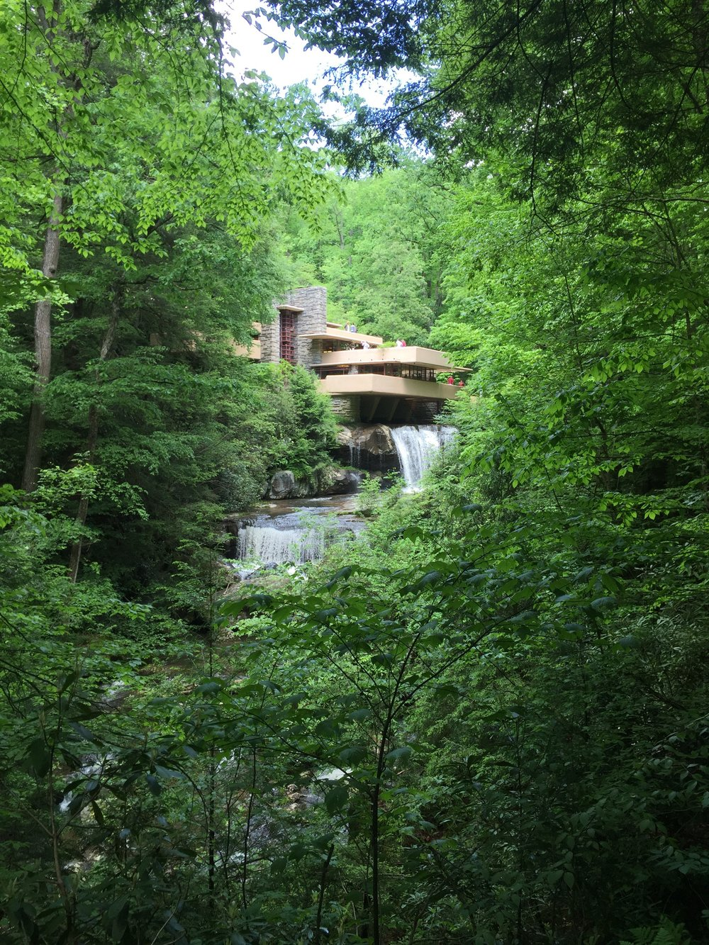 The famous view of Fallingwater