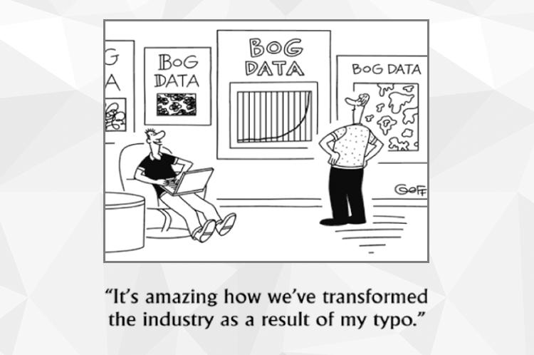 Bog Data or Big Data?