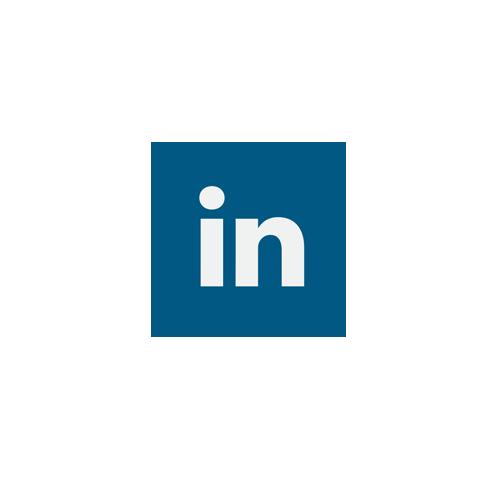 LI-icon.png