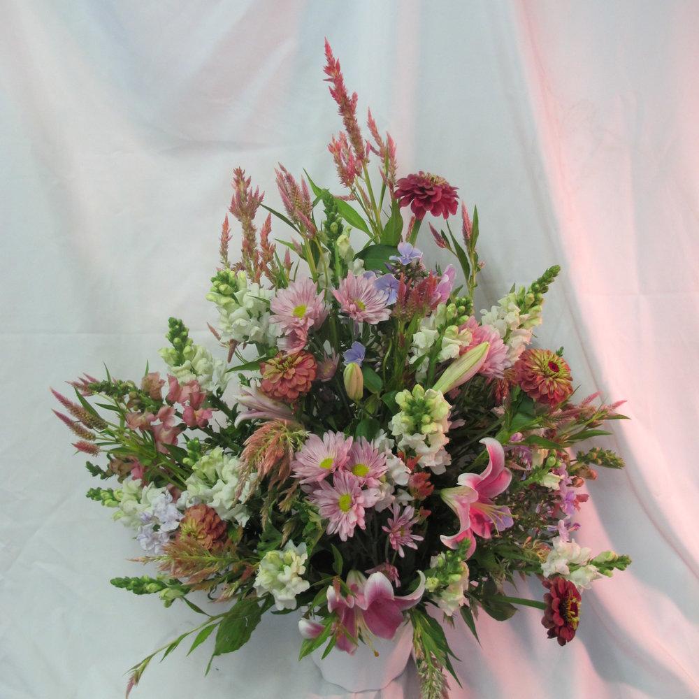 B- Wildflower garden flowers.JPG