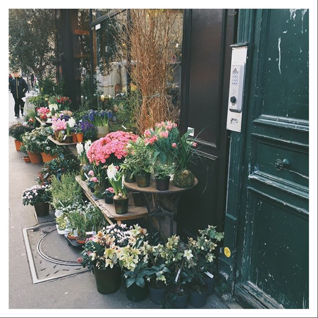 Beauty at every corner... snapped this in the third arrondissmont on a brisk afternoon. #paris #flowershop #botanical #streetsofparis #flowers #floral #parislove