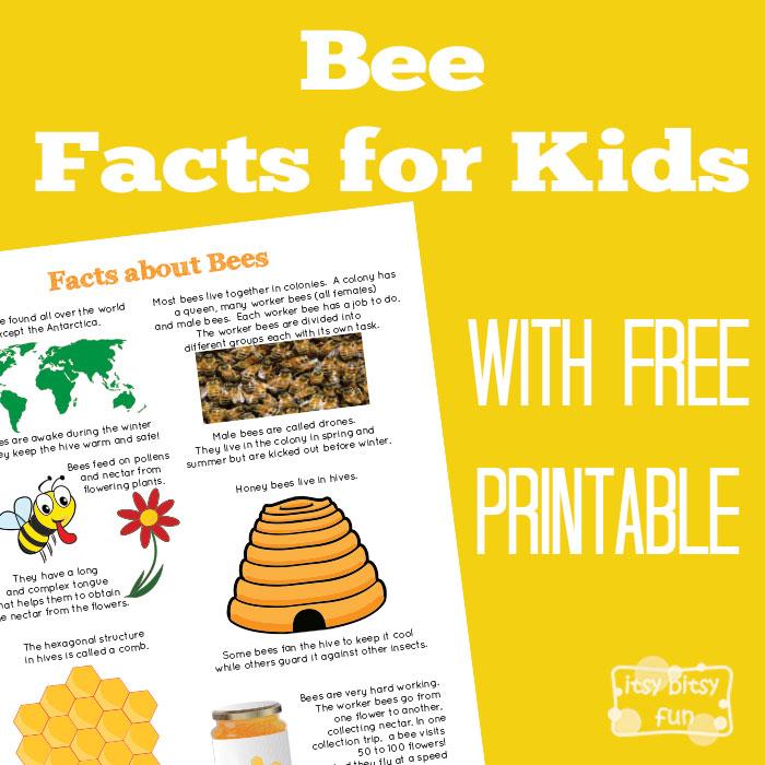 Honeypot Preschool: 10 Fun And Easy Bee Activities For Spring