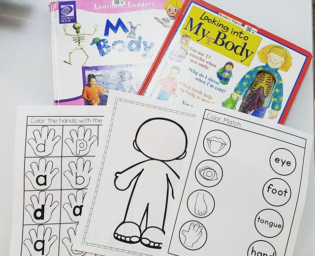 Some pages from the All About Me/Human Body unit. Link in bio to preschool homeschool curriculum.