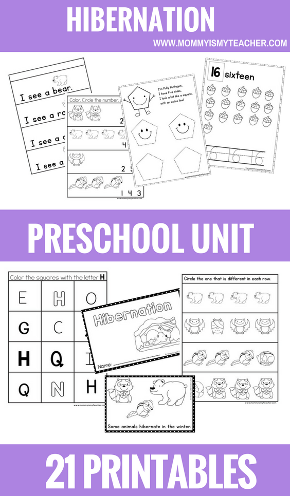 HIBERNATION PRESCHOOL THEME UNIT PRINTABLES.png