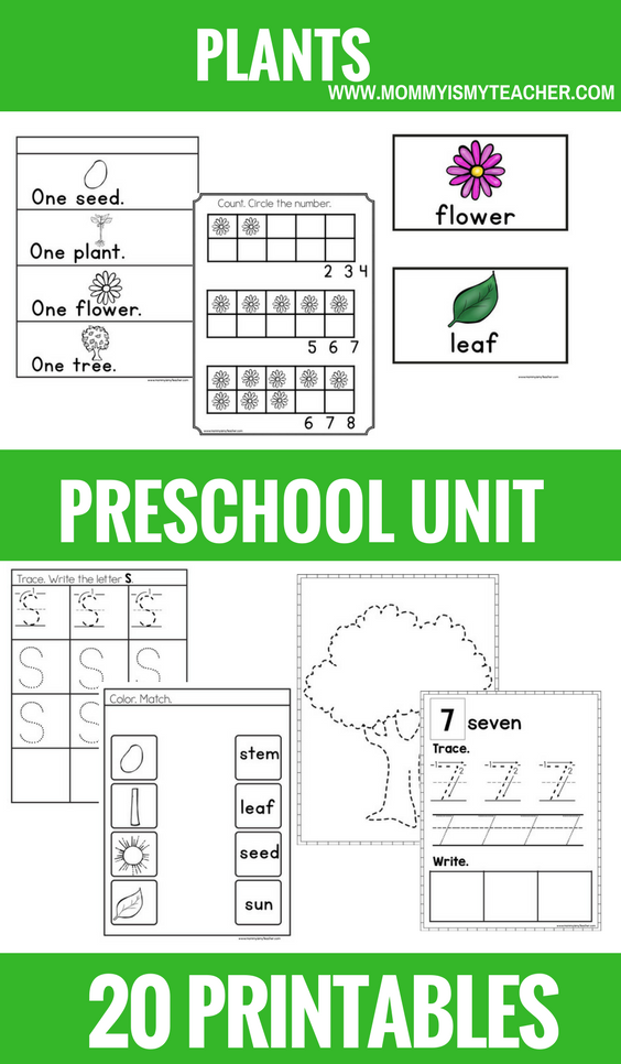 PLANTS PRESCHOOL THEME UNIT PRINTABLES.png