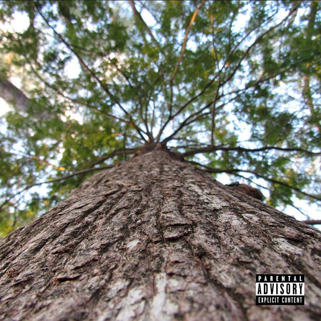 """Today we released outlet third complete project """"trees."""" make sure you go click our link to listen on soundcloud!! all feedback is good feedback! God Bless! RAPTILIA BIIIITTTCHHHH! 🌳🌴🌲#hiphop #todayshiphop #trees #album #instagood #miami #rap #undergroundhiphop #listentothis #xxl #noisey #raptiliamilitia"""