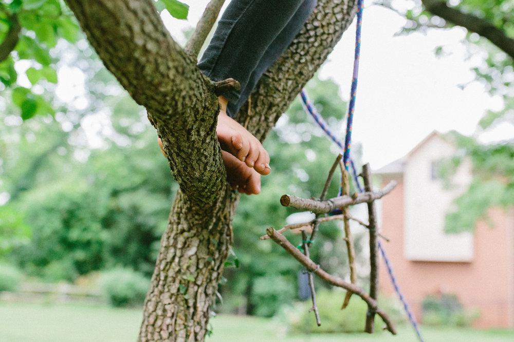 tree feet_squarespace.jpg
