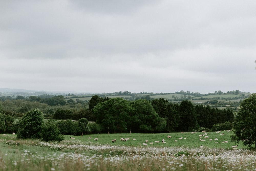 Intimate_Warwickshire_Countryside_Wedding_UK_3.JPG