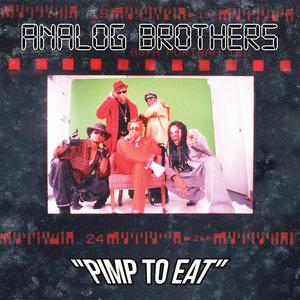 Analog Brothers