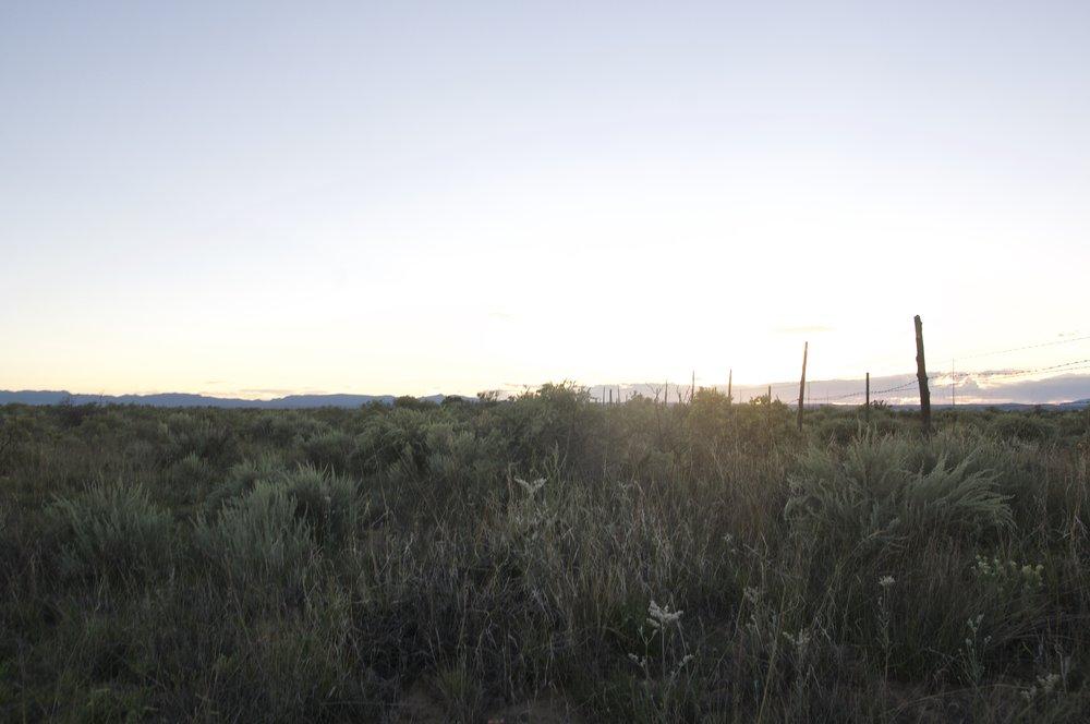 macintosh-area-8-17-2017-nm-67158.jpg