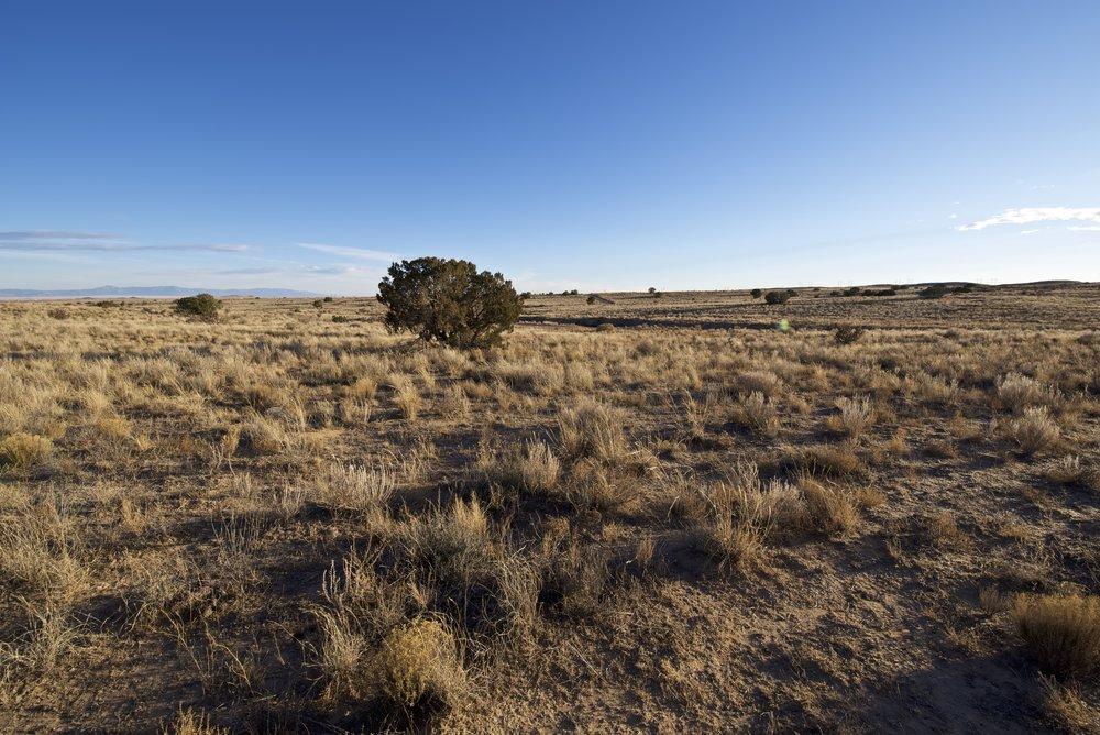 SNNM-2430A-rio-rancho-85175.jpg