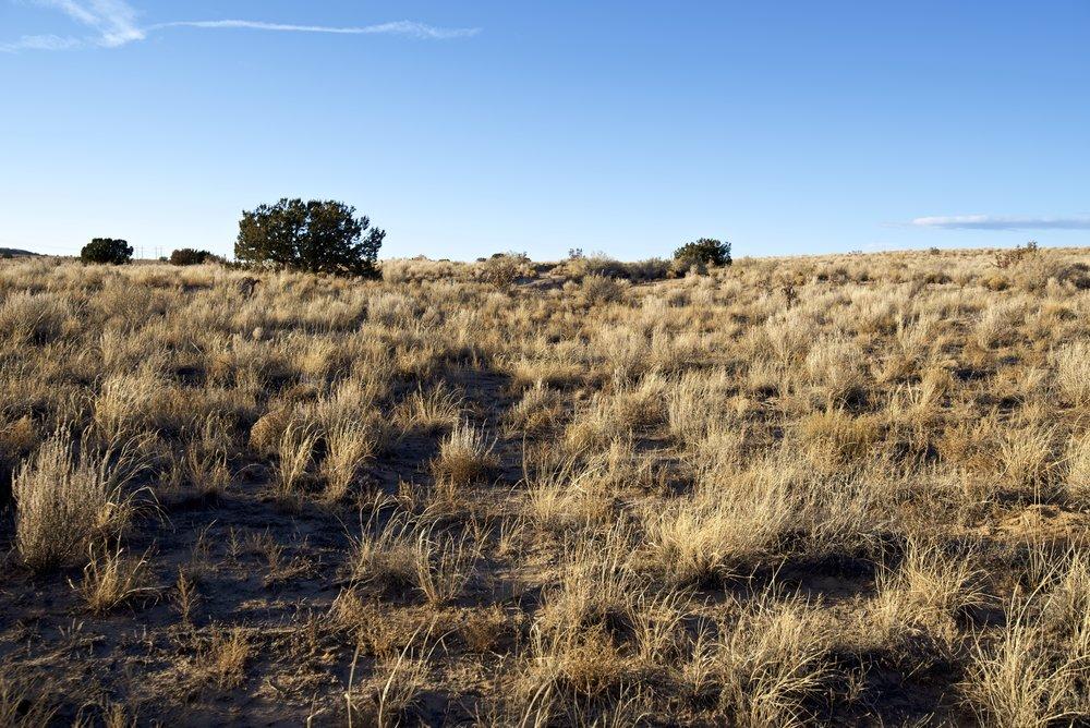 SNNM-2430A-rio-rancho-85180.jpg
