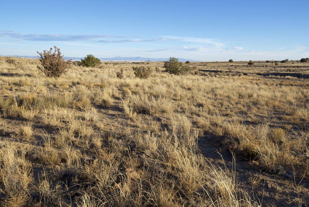 SNNM-2430A-rio-rancho-85183.jpg