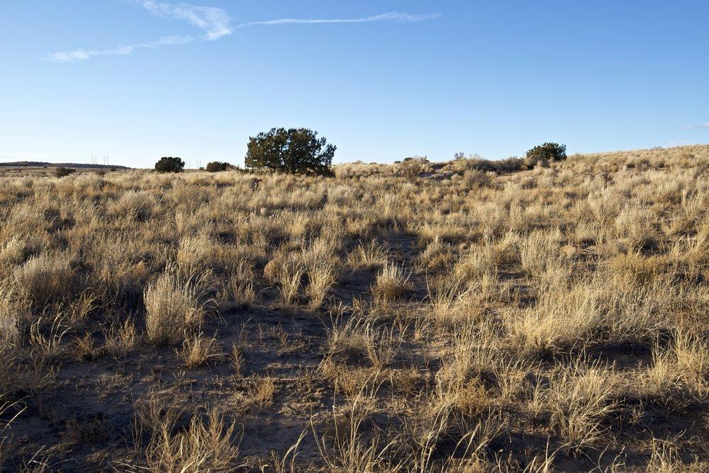 SNNM-2430A-rio-rancho-85186.jpg