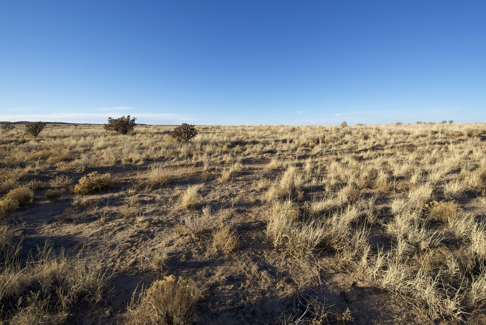 SNNM-2430B-rio-rancho-85460.jpg
