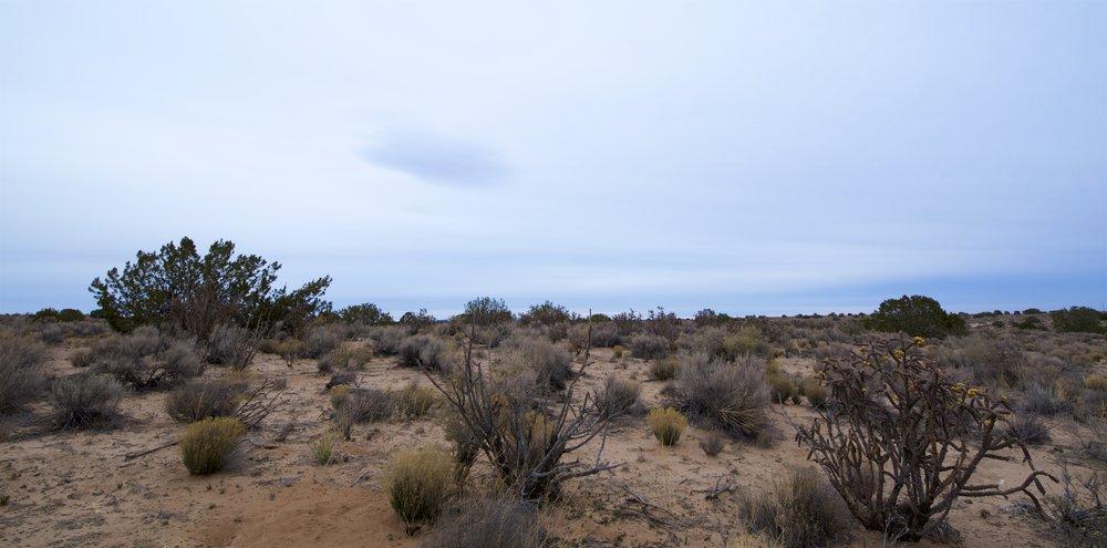 SNNM-2341-rio-rancho-85809.jpg