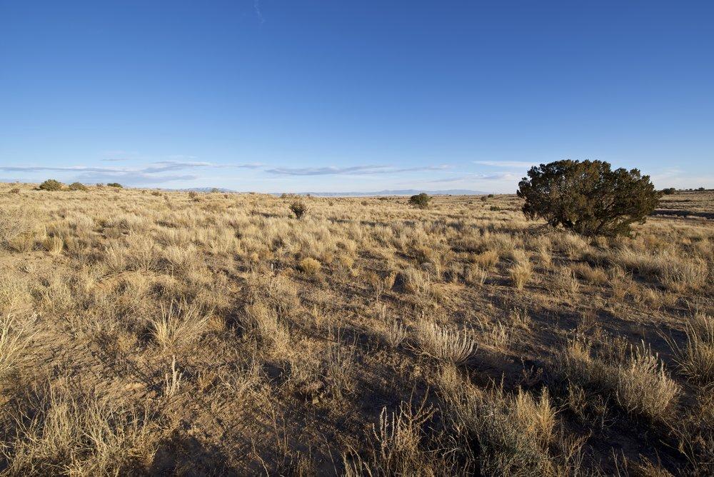 SNNM-2430A-rio-rancho-85176.jpg