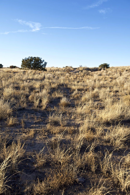 SNNM-2430A-rio-rancho-85193.jpg