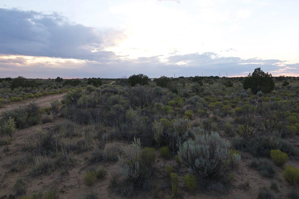 SNNM-1718-rio-rancho-68111.jpg
