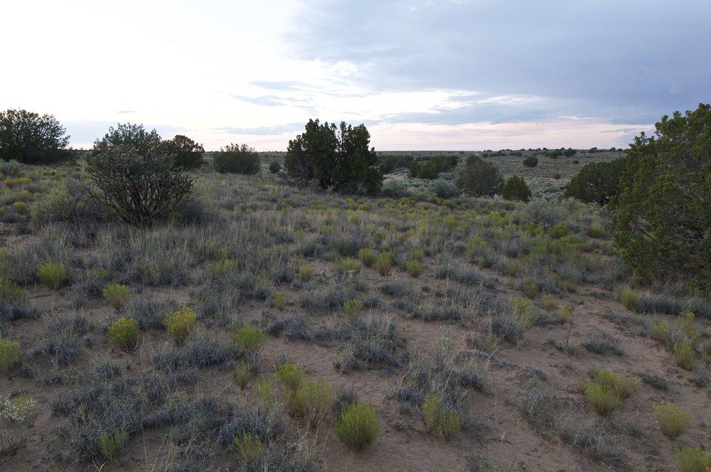SNNM-1718-rio-rancho-68154.jpg