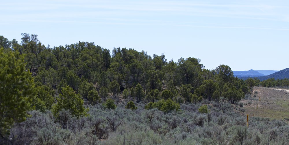 SJNM-3561-navajo-dam-123667.jpg