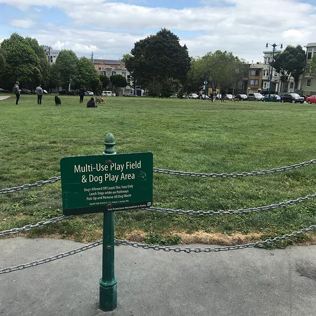 City park tour - Duboce Park stop. #goals #dogplayarea #multiusespace #greenspaceforeveryone #toesandpawswelcome