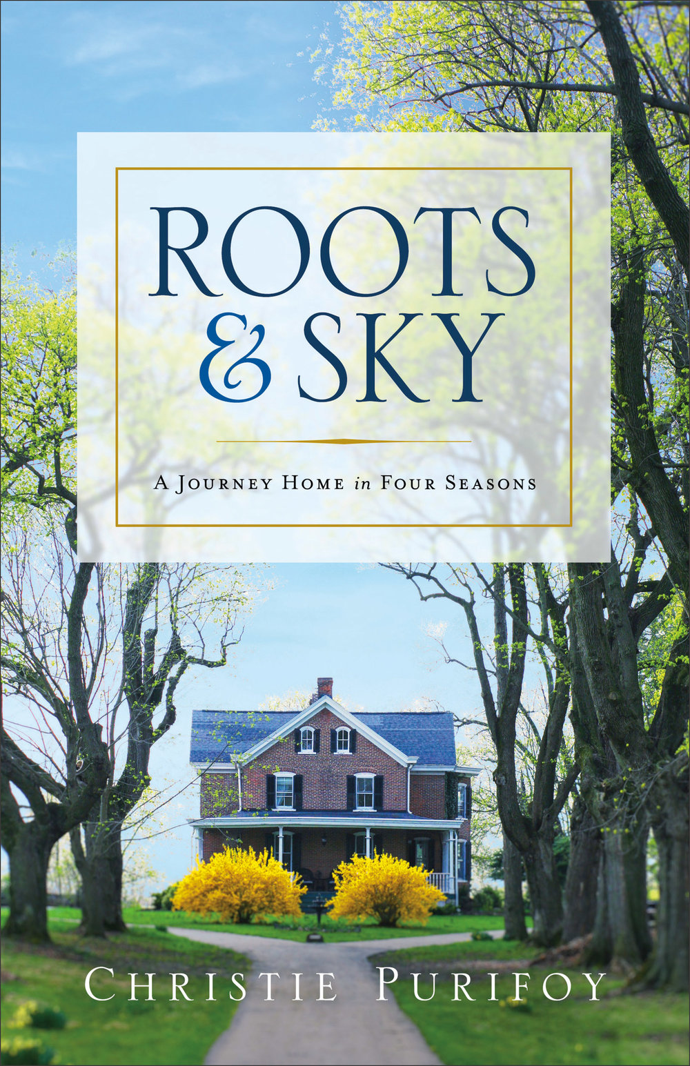 Roots-and-Sky_cover.jpg