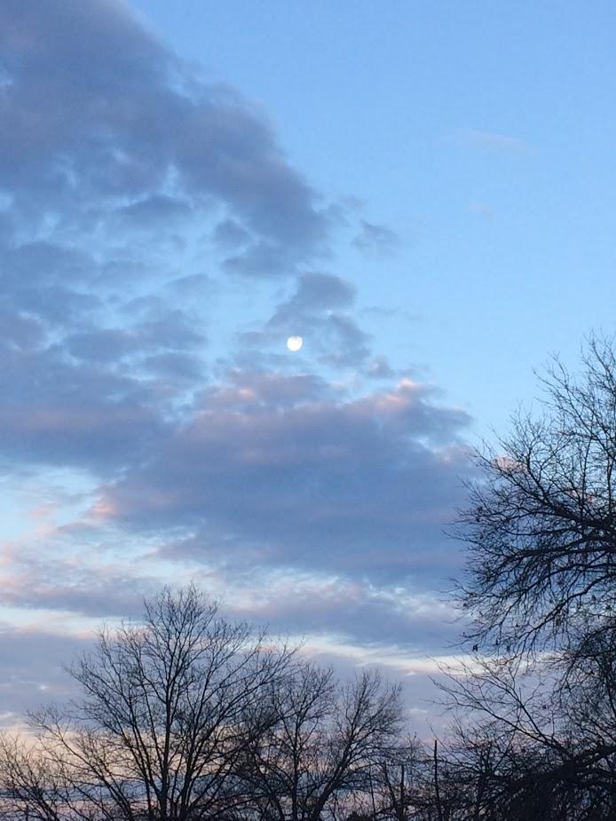 march morning moon.jpg