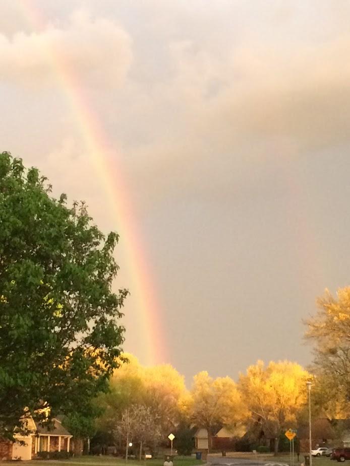 rainbow spring.jpg
