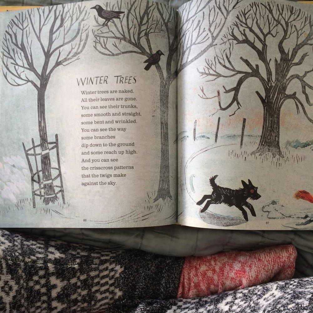winter trees poem 1.jpg