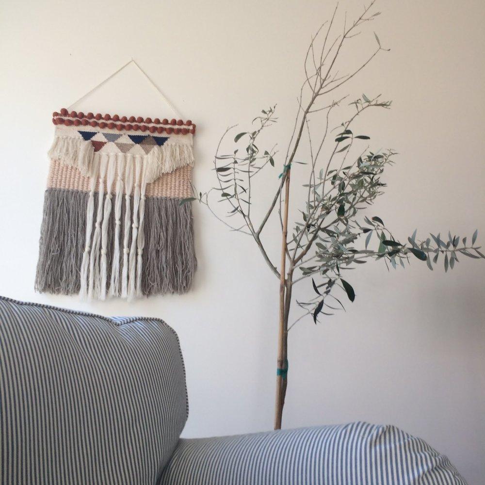 bare olive tree.jpg