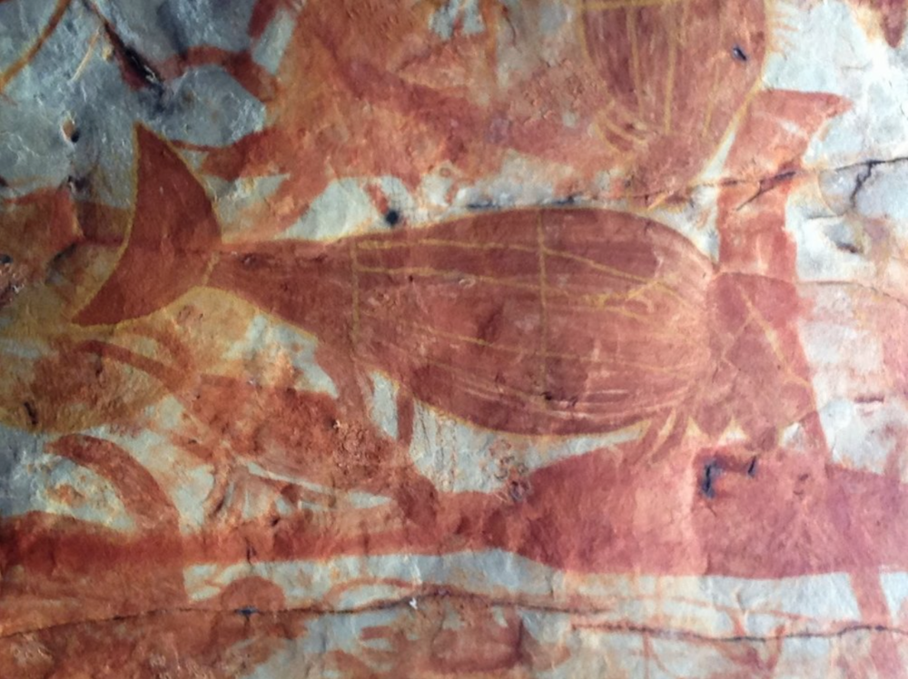 Indigenous dugong painting on Groote Eylandt