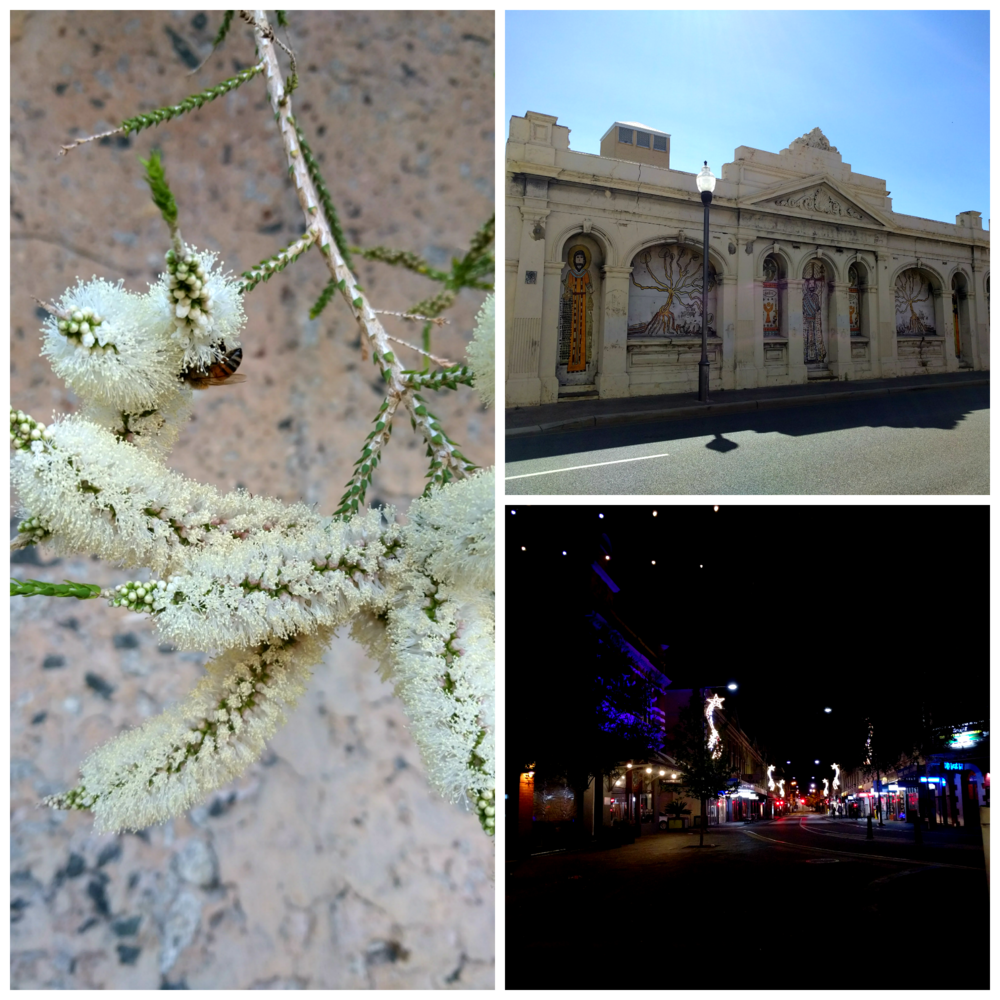Sights in Fremantle, Western Australia. Western Australia was last on my checklist - I've now visited every state in Aus!
