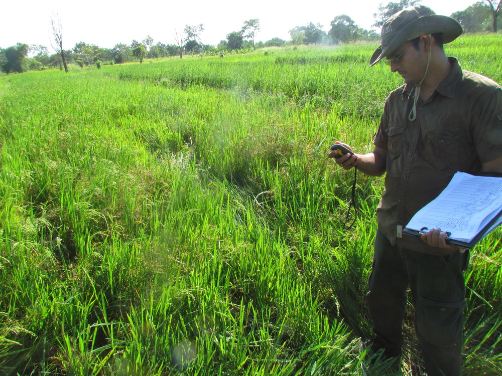 Ashoka monitoring elephant damages to crops in the villages bordering the Udawalawe National Park