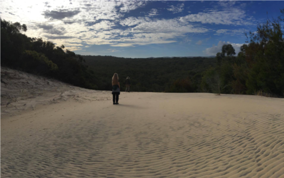 Fraser Island sand blow - Queensland